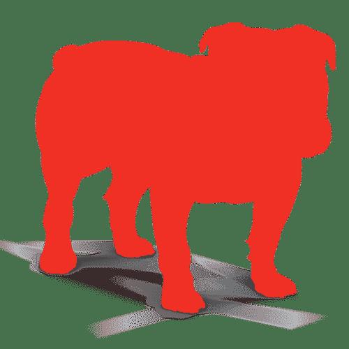 BullGuard Antivirus 2021 Crack With License Key Latest